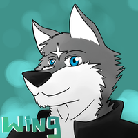 Wing Wolf face 2 by wingwolf88