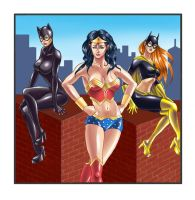 The Women of DC 2009 Calendar by blackcat906