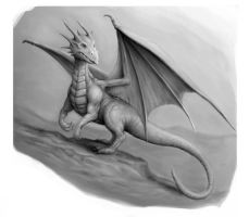 Dragon 1 by SHAWCJ