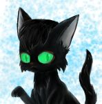 Black Kitty by HelenTalv