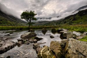 misty morning in the valley by CharmingPhotography