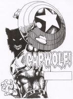 Capwolf Cover 405 by Stonegate