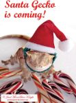 SANTA GECKO IS COMING! by NocturneJewel
