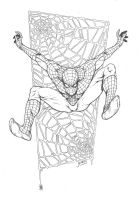 Marvel - Spiderman pencils by RubusTheBarbarian