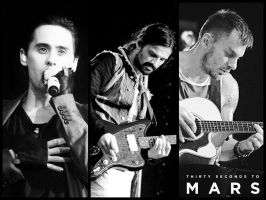 30 Seconds to Mars Wall 351 by martiansoldier