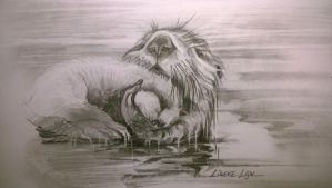 Sea Otter mom and pup - study 1 by Linekelijn