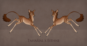 Taharial x Eithne Fawn Design 761 by TigressDesign