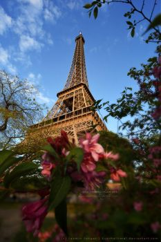 Eiffel Tower in Spring by kuschelirmel