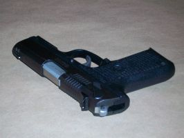 Stock Ruger P95- 11 by TheBitterBullet