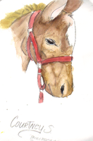 Watercolor Horse by XTaintedxBloodX