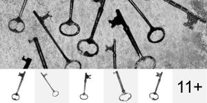 Skeleton Keys Brushes by Designslots