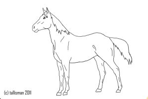 FREE Horse Line Art by TallyBaby13