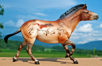 Breyer horse- Caves of Lascaux by Tephra76