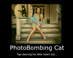 PhotoBombingCat Demotivational by SuprVillain