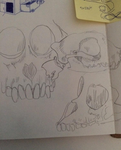 animal skulls by Bronzepaw