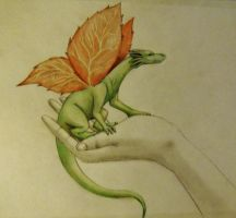 The leaf winged dragon by akilight