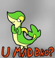 U MAD BRO? Snivy by Aqws7