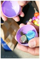 Year Old Easter Egg by TheDarkRoom-Photo