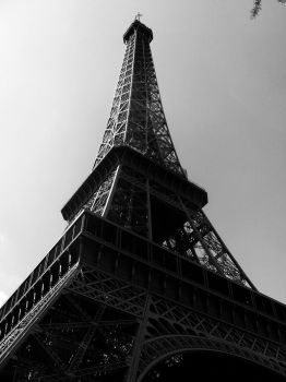Paris Gallery - B W 10 by ExpectRoses