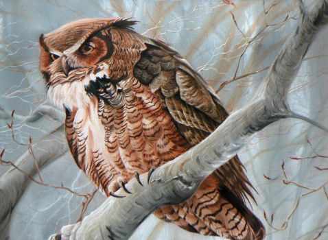 Bateman Study-Great Horned Owl by jocarra