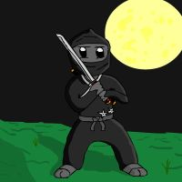 the NINJA by Raulboy