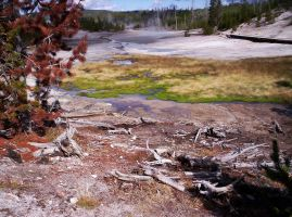 Norris Geyser Basin Trail by SunfallE