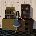 Cabinets and Shelves Reworked by AelinNamarie