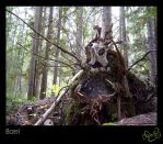 Forest Guardian: Bael by WonderDookie