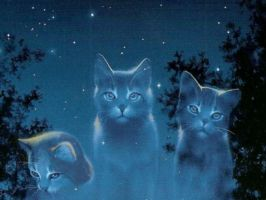 Welcome to StarClan by Spotty0