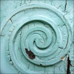 Urban Nature - Spiral by AForAdultery