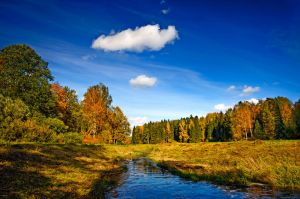 The colors of Fall... _11_ by my-shots