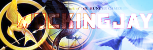 Hunger Games Banner-not free by RBSRdesigns