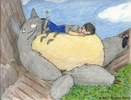 Napping on Totoro by Rocket-Stevo