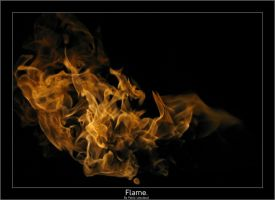 Flame. by pleautaud