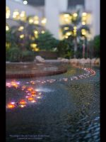 Fountains of the Emirates by GMCPhotographics