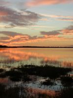 Sunset at Myakka 4 by illmatar