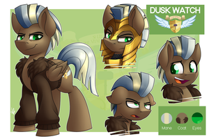 Commission - Dusk Watch Ref Sheet by ShinodaGE