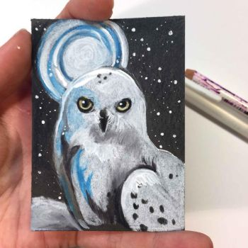 Snowy Owl ACEO by Lucky978