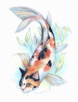 Calico Catfish by JAMiAm100