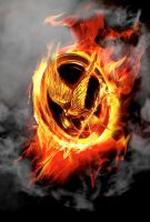 The Mockingjay Pin by bubblenubbins