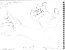 Hand Study 2 by CartoonMad97