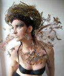 Stock - Mother of birds .. Feathers by S-T-A-R-gazer