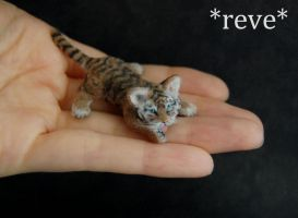 Tiger Cub Sculpture OOAK Handmade Miniature Scul by ReveMiniatures