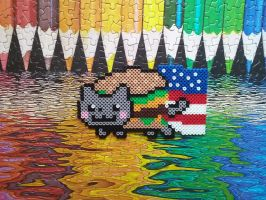 America! Nyan cat by HigurashiKarly