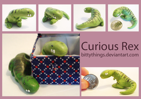 Curious Rex - SOLD by Bittythings