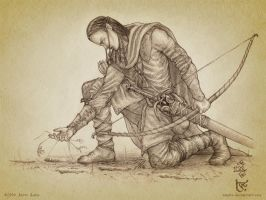 Beleg Strongbow by aautio