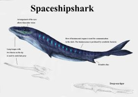 REP: Spaceshipshark by Ramul