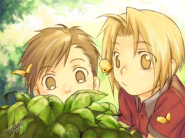 Curiosity of the Elric Bros. by taty1410