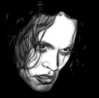 The Crow by feawen