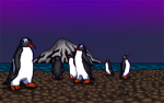 Gentoo Penguins by White-Rose-Brian